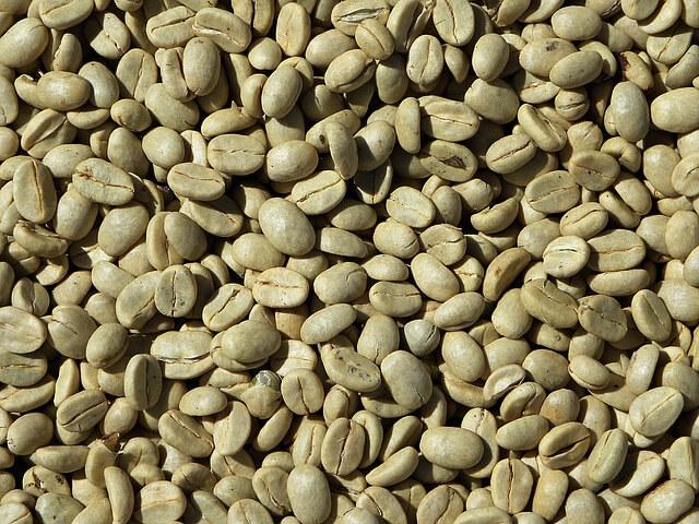 grünee kaffeebohnen