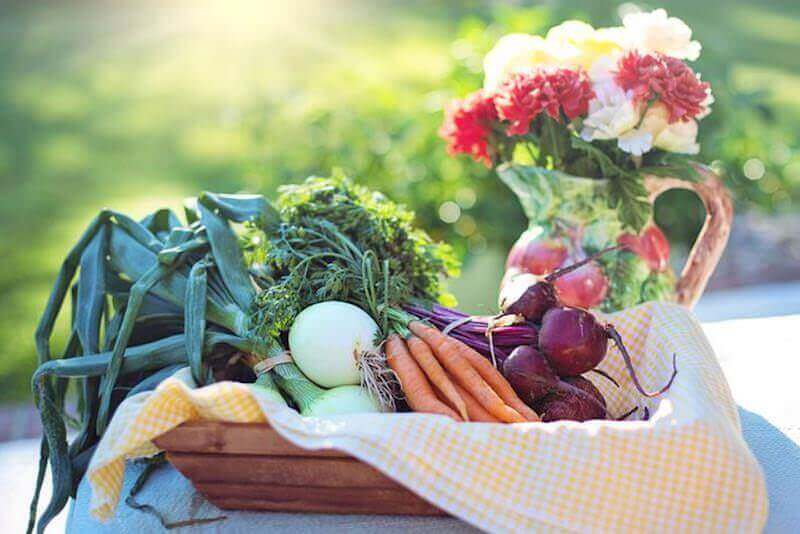 Vegetarische Paleo-Diät