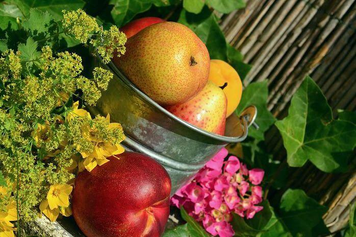 Gesunde Ernährung bei der 5:2-Diät
