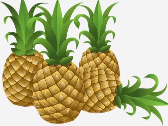Mono Diät mit Ananas