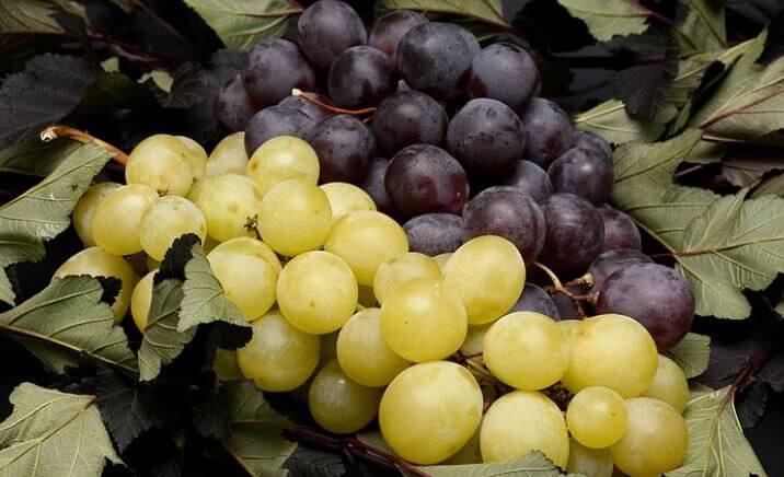 Rote und weiße Trauben bei der Weintrauben Diät
