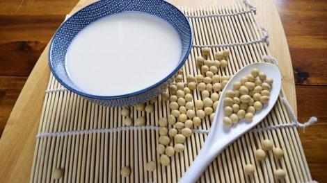 Soja Protein Diät