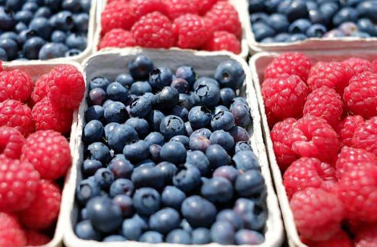 Obst bei der Atkins Diät
