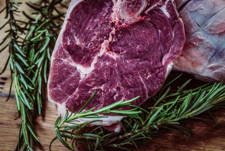 Atkins Diät - viel Fett, wenig Kohlenhydrate