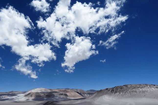 Maca Pulver aus den Anden